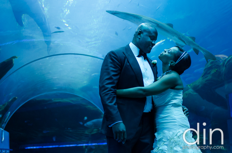 Abdul & Nya - Georgia Aquarium | Atlanta Wedding Photographer (58)