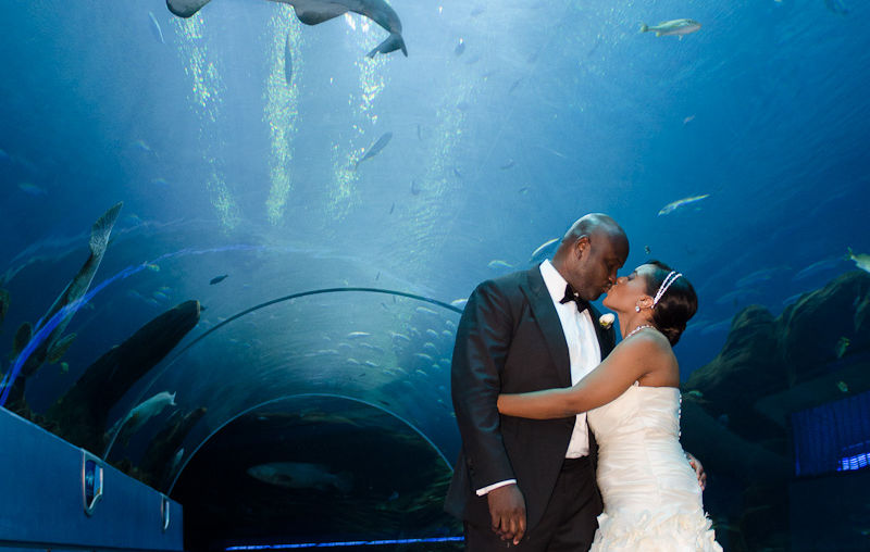 Abdul & Nya - Georgia Aquarium - Ebenezer Baptist Church | Atlanta Wedding Photographer